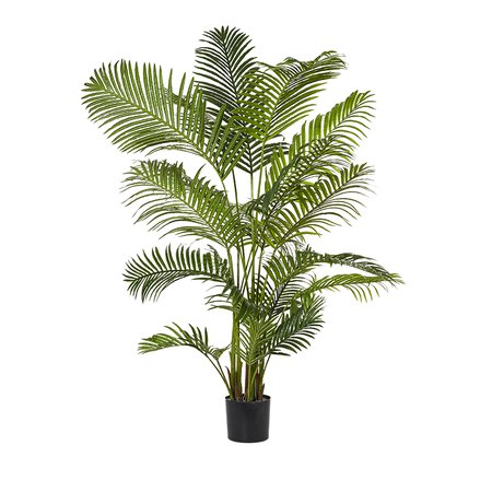 Home Republic Areca Palm Potted Plant