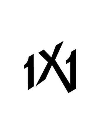 1X1 Logo