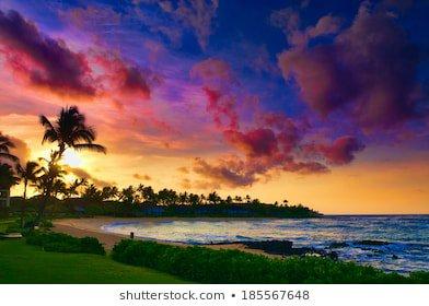 Hawaii Images, Stock Photos & Vectors | Shutterstock