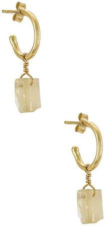 Arms Of Eve Carmen Hoop Earrings