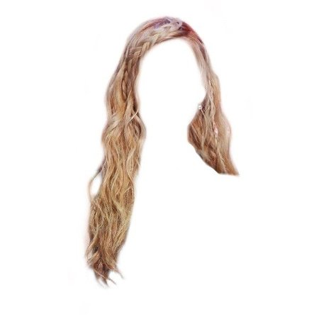 Blonde Braided Hairstyle PNG - Polyvore