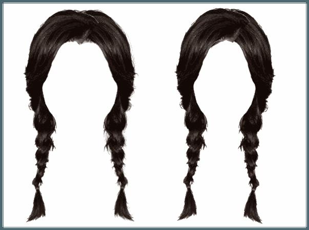 Twin Braids Black Hair