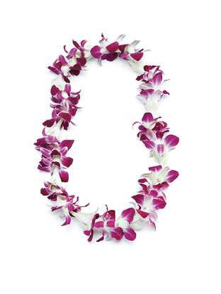 Tuberose and Orchid Lei