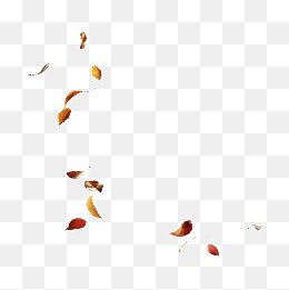 falling leaves - Google Search