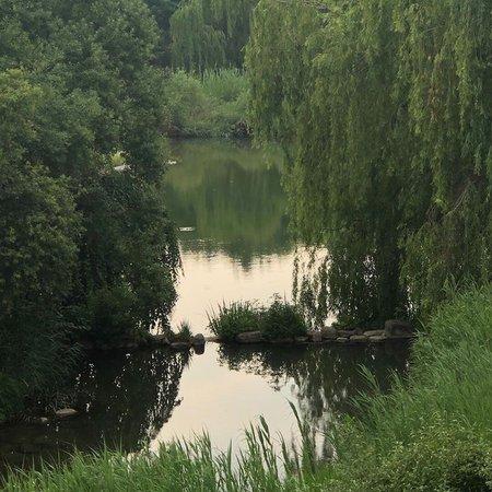 lake aesthetic