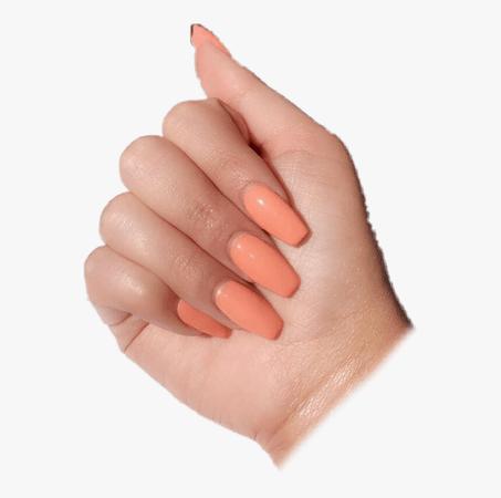 #nails #nail #pngs #arianagrandeedit #pink #pastel - Summer Nails, Transparent Png - kindpng