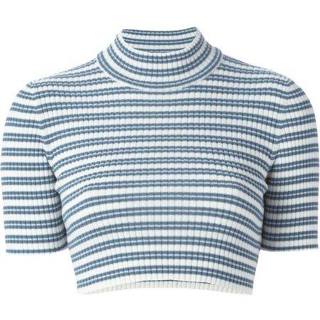Blue & White Striped Turtle Neck Crop Top