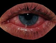 Orange green eye polyvore moodboard filler | moodboard, png, filler, minimal, overlay in 2018 | Pinterest | Eyes, Green eyes and Polyvore