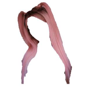 pink hair png half up pigtails