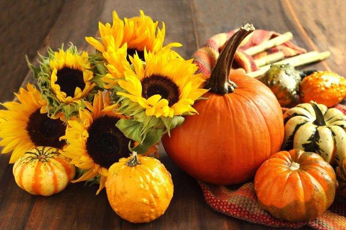 10 Fall Activities for Your Fall Bucket List - Lillian Vernon Blog