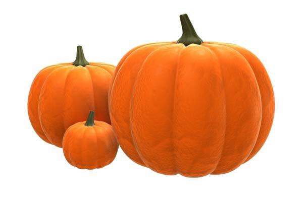 pumpkin_ltmjyv.jpg (600×399)