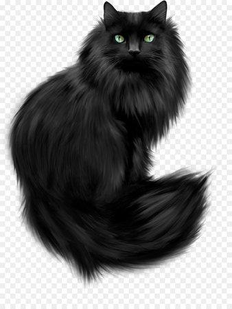 kisspng-kitten-maine-coon-cat-training-black-cat-clip-art-cats-5ad0ac2f55f552.4066234615236250073521.jpg (900×1200)