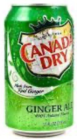 canada dry soda
