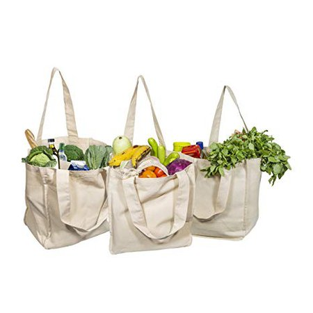 Best Canvas Grocery Shopping Bags