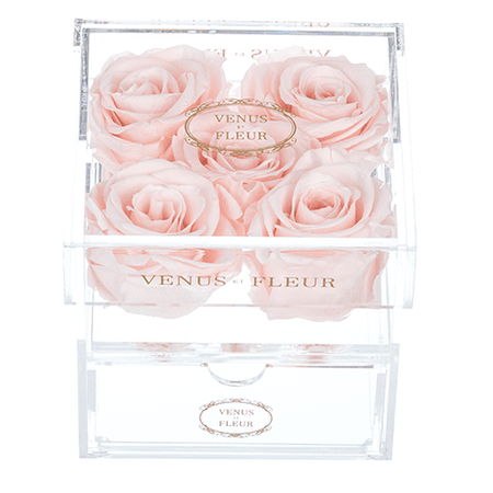 Five Eternity® Roses In Clear Container - Luxury Roses | Venus ET Fleur