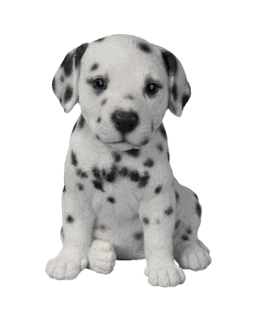 Dalmatian Puppy transparent PNG - StickPNG