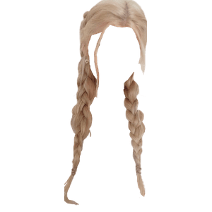 blonde hair twin braids png