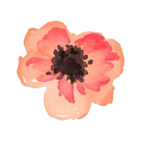 Paint Flower