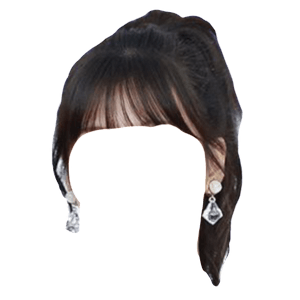Dark Brown Hair PNG Bangs Ponytail