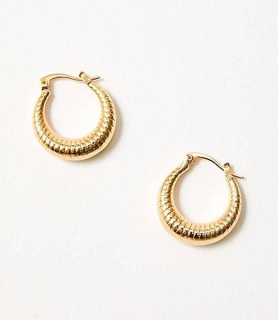 Petit Moments Emilie Hoop Earrings | Lou & Grey
