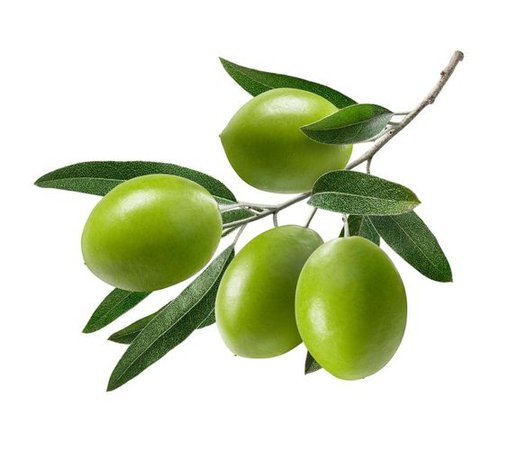 green olive png filler