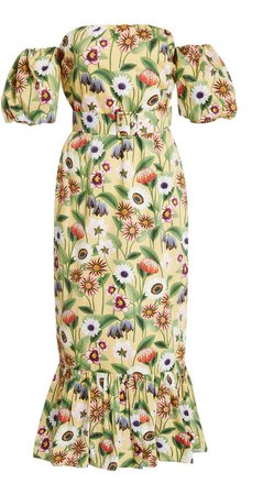 Aleila Floral-Print Cotton-Poplin Midi Dress