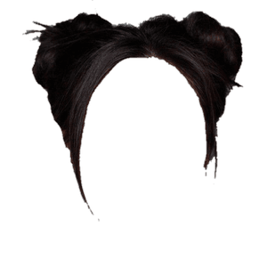 BLACK HAIR PNG SPACE BUNS