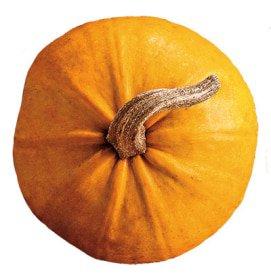 Pumpkin Spice Chai Latte | TAZO® Tea