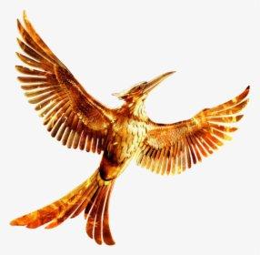 Mockingjay - Hunger Games 75th Quarter Quell Png, Transparent Png , Transparent Png Image - PNGitem
