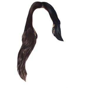 Brown Black Hair PNG