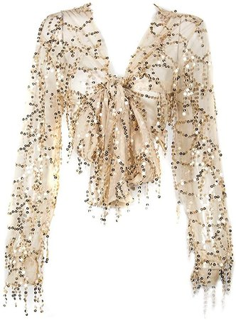 Withchic Golden Sequin Crop Shirt Sheer V-Neck Tie Front Blouse Top Cover Ups at Amazon Women's Clothing store