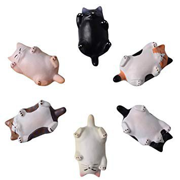 Cat Refrigerator Magnets Office Magnet, Funny Kitten Kitchen Toy Decor Fridge Cat Ornament, Perfect for Whiteboard, Refrigerator, Map, Notes, Calendar, Gift for Lady Cats Lovers Novelty Butt 6 Pack: Amazon.ca: Home & Kitchen