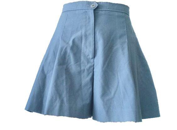 blue skirt png