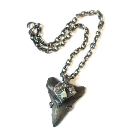 Megalodon Necklace – Mary Gallagher