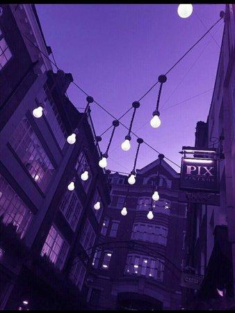 purple nights