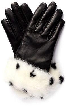 gloves dalmata
