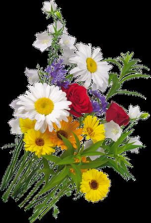 FLOWERS ;3