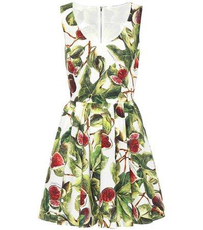 Fig cotton poplin minidress
