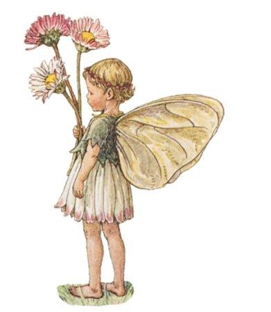fairy child #3