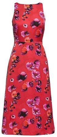 Floral V-Back Fit-and-Flare Dress