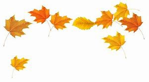 Autumn Leaves Clip Art - Bing images