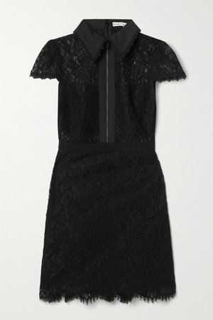 Alice Olivia - Ellis Cotton-poplin And Grosgrain-trimmed Corded Lace Mini Dress - Black