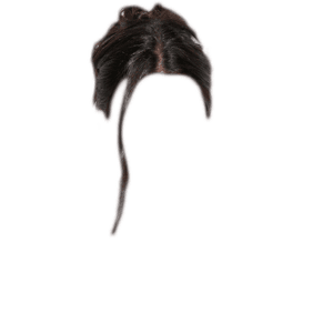BLACK HAIR PNG UPDO BUN WITH STRANDS IN FACE