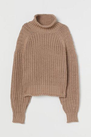 Ribbed Turtleneck Sweater - Beige - Ladies | H&M US