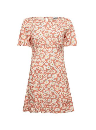 DP Petite Coral Daisy Print Fit And Flare Dress | Dorothy Perkins