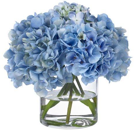 Heavenly Blue Hydrangeas