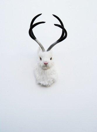 The Luiza - Faux Furry White Jackalope Head