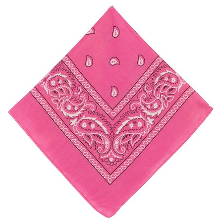 Pink Paisley Bandana, 20in x 20in | Party City