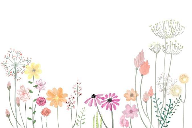 Flower Petals Spring - Free image on Pixabay