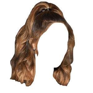 Light Brown Highlights Short Hair Half Up Half Down PNG